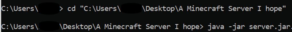 Launch Server