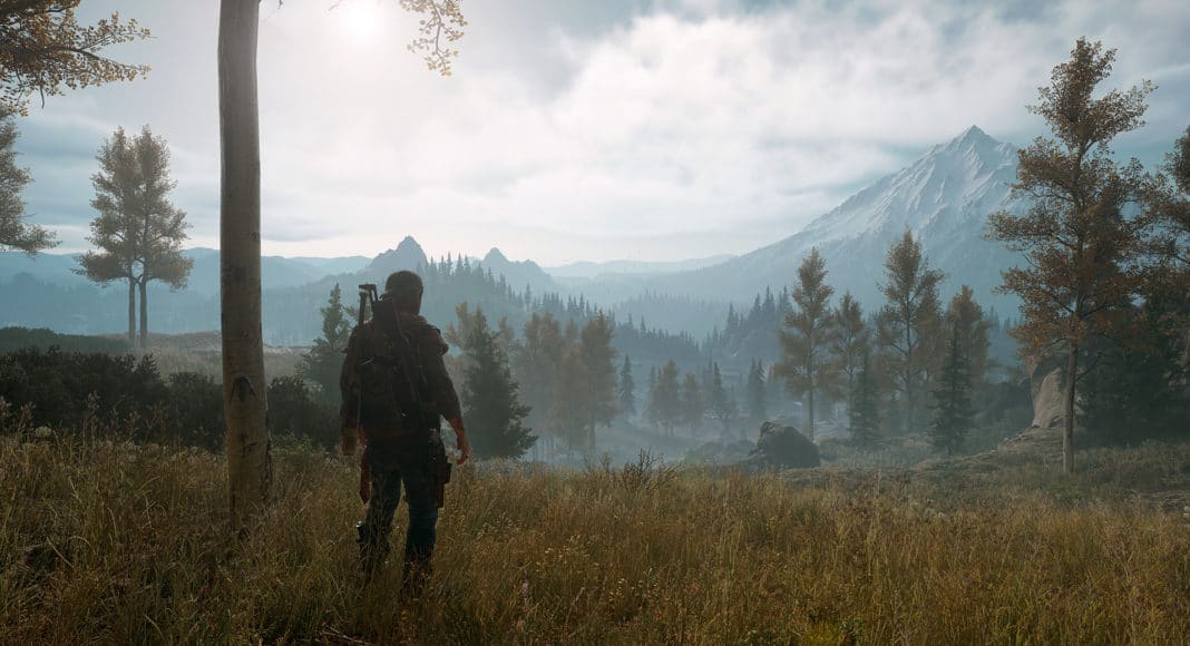 Days Gone Screenshot of the PC Version